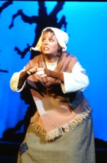 1993 Into the Woods (1)