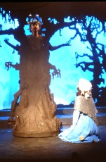 1993 Into the Woods (3)