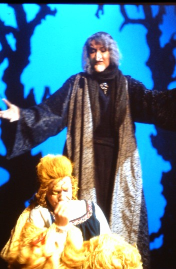 1993 Into the Woods (5)